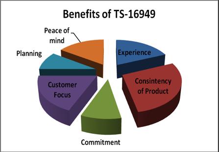 ts16949-pie-chart